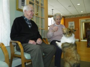 Senior Care Pet Therapy